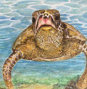 aquarel zeeschildpad